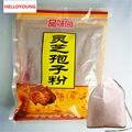 500g Ganoderma Lucidum, Lingzhi, selvagens reishi Esporo Em Pó, medicina chinesa ervas, Anti-câncer e anti-envelhecimento Frete grátis