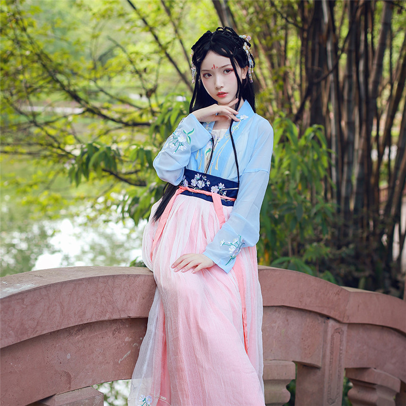 New style Han Chinese female costume Hanfu New tradition Hanfu Nuns Skirt Embroidery Daily princess skirt in Chinese Folk Dance from Novelty Special Use