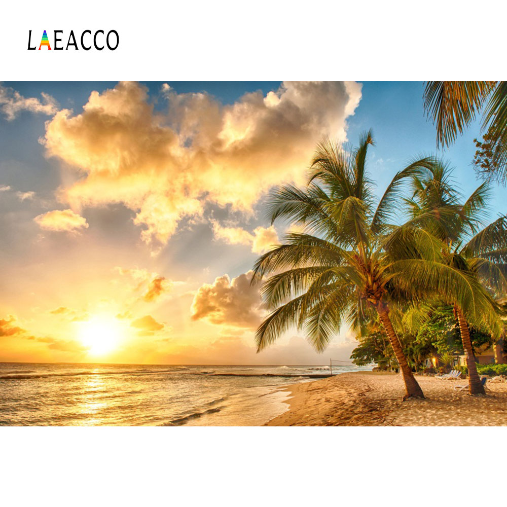 Palm Tree Beach: Laeacco Summer Holiday Party Seaside Beach Sunset Palm
