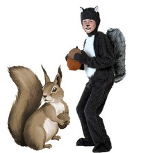 Halloween Adult kids Boy animals squirrel Cosplay Costumes clothes Stage Amphibian costume child Animal squirrel Jumpsuits  sc 1 st  AliExpress.com & Buy squirrel halloween costume and get free shipping on AliExpress.com