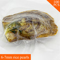 Top Selling Gift for Women Freshwater Oval Pearl Oyster with a 6-7mm Pearl in Vacuum Package 100pcs