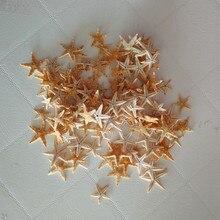 Starfish star Platform sea