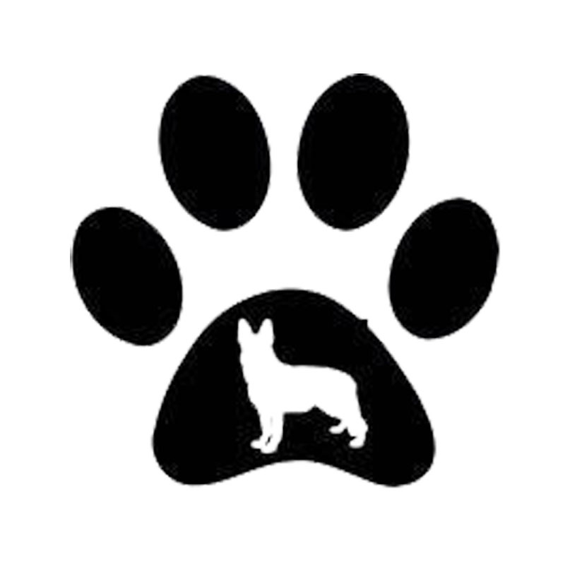 Dog Accessories Uk Free Delivery