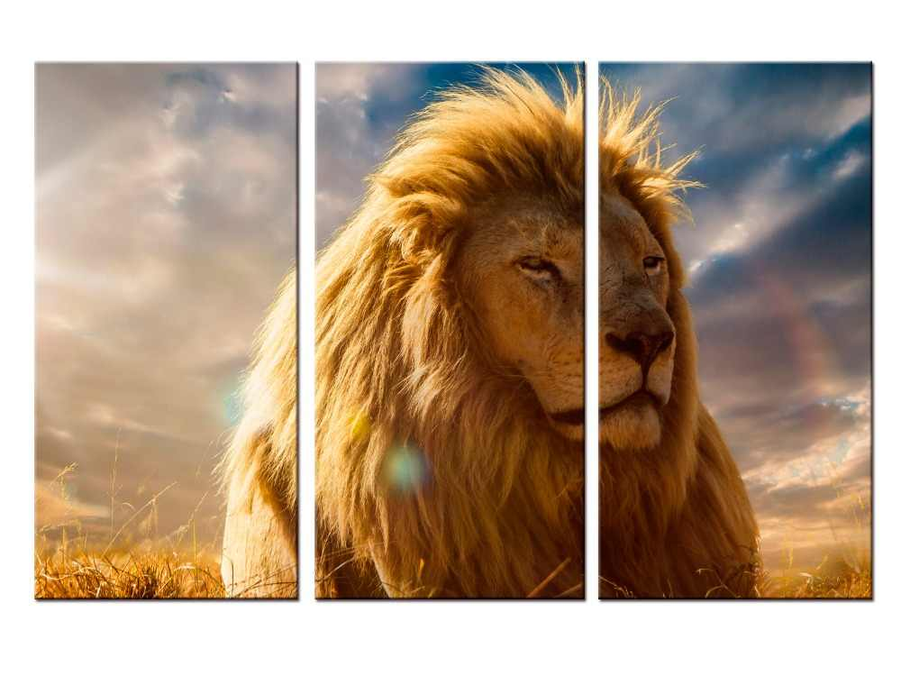 3  pieces / set HD Printed Animals Lion Group Painting Canvas Print room decor print poster picture canvas