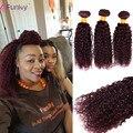 7a Mink Brazilian Kinky Curly Virgin Hair 99J Red Human Hair Bundles 3 Bundles Deals 99j burgundy red wine Kinky curly hair