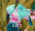 Большая Акция! 50 Семена/Мешок розовый Iris Семена, популярные многолетнее цветник, великолепный срезанных цветов, # P752IN
