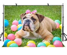 7x5ft Bulldog Backdrop Cute Colorful Balloon Green Grass Photography Background and Studio Props