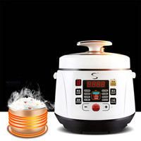 electric pressure cooker intelligent timing pressure cooker reservation rice cooker travel stew pot 2L 110V 220V EU US plug