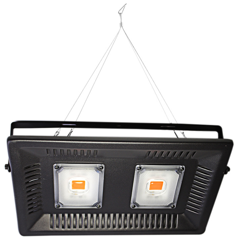 Led Full Spectrum Grow Floodlight 100W Ultra Thin Waterproof 220V Led Growing Lamp For Outdoor Vegetable Plant Eu Plug