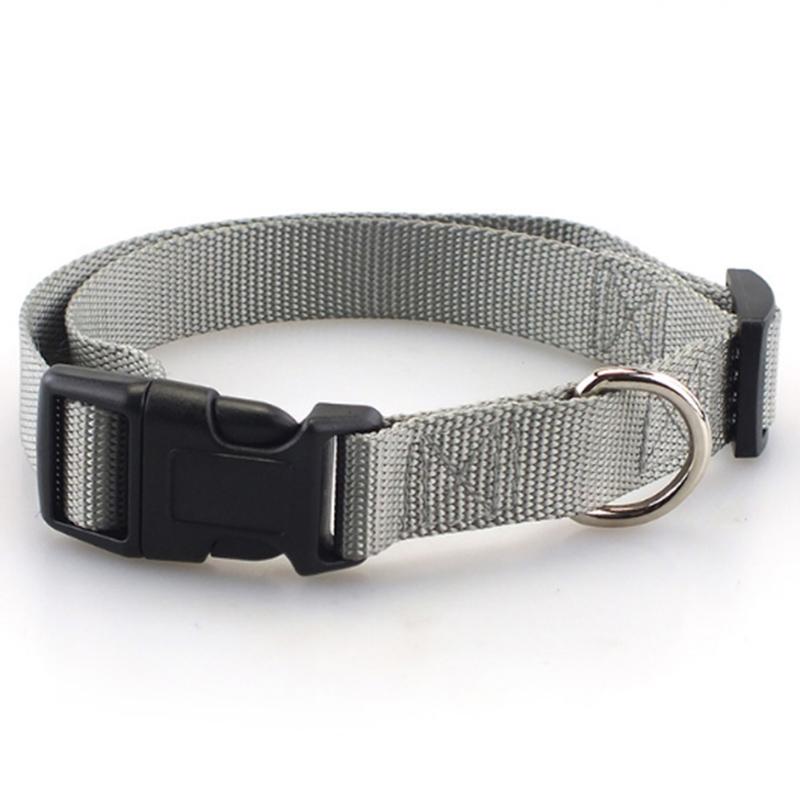 Collar de perro clásico 5
