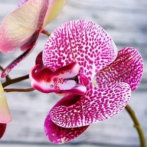 Image 3 - 3D Nhân Tạo Bướm Hoa Lan Giả Bướm Đêm Flor Hoa Lan Cho Gia Đình Đám Cưới DIY Trang Trí Thật Cảm Ứng Trang Trí Nhà Flore