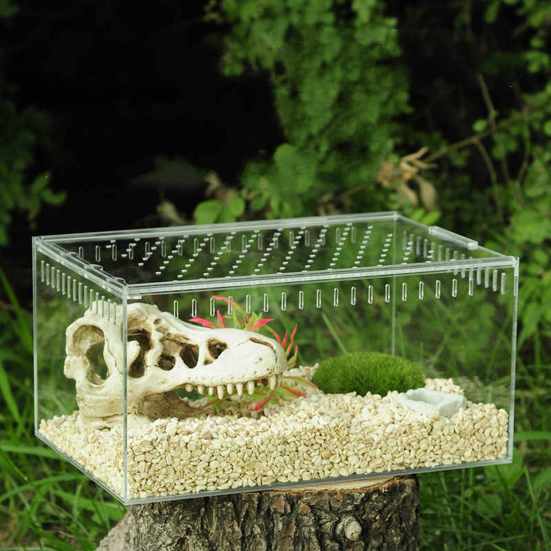1 Buah 4 Ukuran Acrylic Reptil Makan Kotak Serangga Kotak Belalang Sembah Reptil Rumah Serangga Kandang Reptil Terrariums