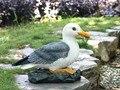 Креативный Американский Сад украшение двора Животное украшение бассейн Rockery ландшафтный дизайн моделирование Большая Чайка ремесла