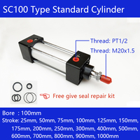 Optional magnet Free shipping SC100 type Standard cylinders 100mm bore, single rod double acting pneumatic cylinder