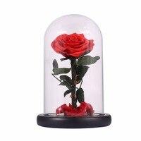 Ebedi Gül Çiçek Prens Cam Kapak Ölümsüz Doğal Korunmuş Taze Çiçekler Gelin Düğün Dekor sevgililer Günü Hediye Sıcak