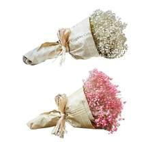 Flores secas naturales de Gypsophila para decoración del hogar, manualidades DIY, regalos, estrellas del cielo, accesorios para fotos, 1 unids/lote