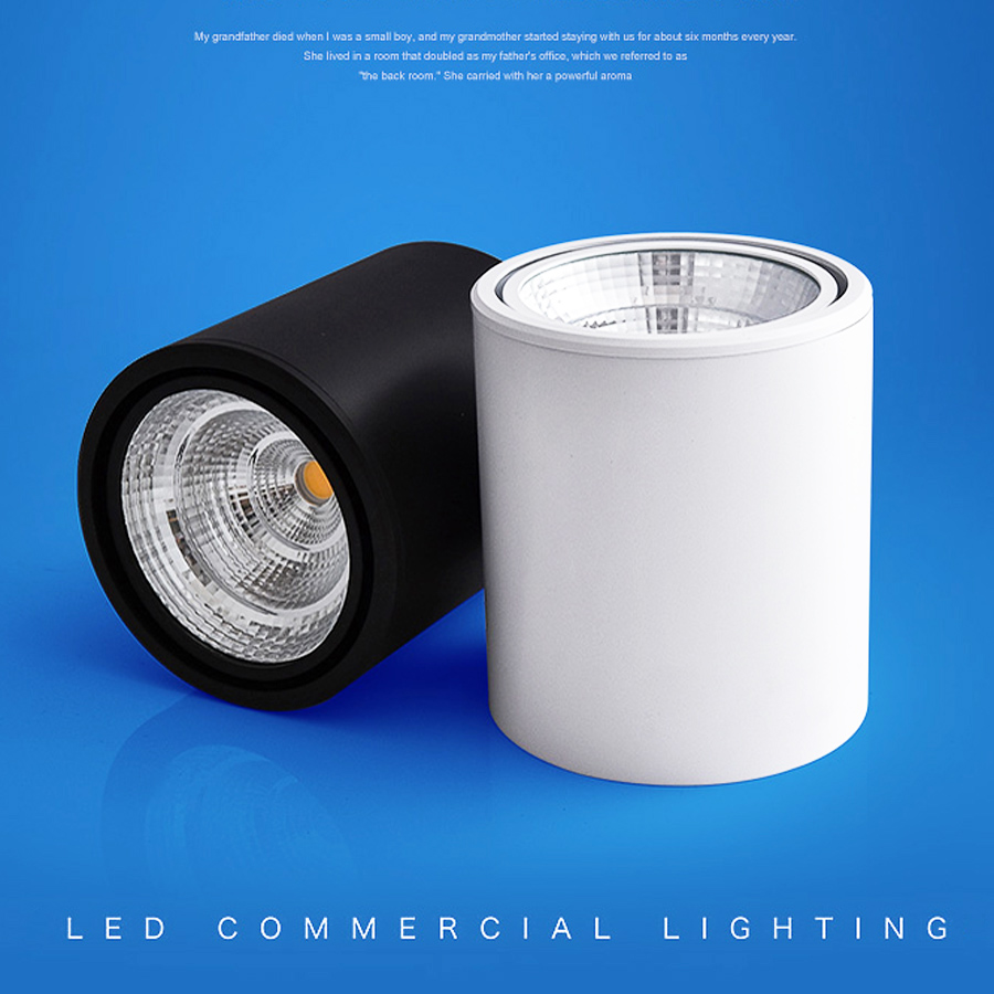20w Led Surface Mounted: Aliexpress.com : Buy Hoonia LED Downlight Surface Mounted