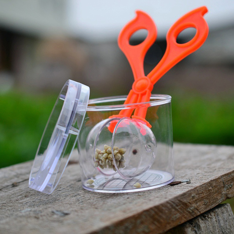 Nature Exploration Toy Kit Kids Plant Insect Study Tool - Plastic Scissor Clamp Tweezers Inset Round Head Scissors Clamp Toy