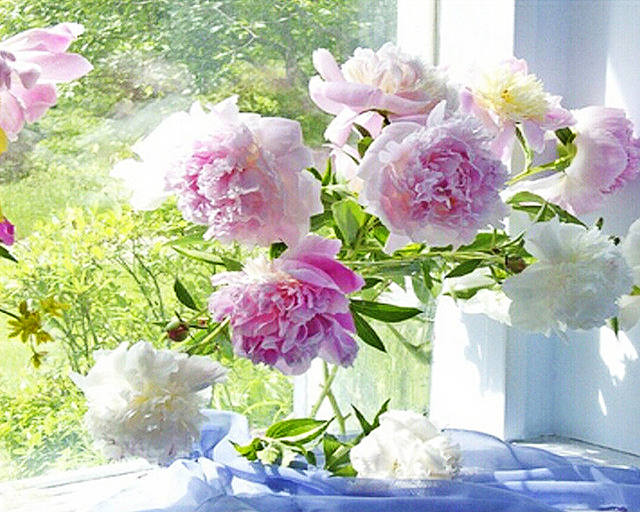 Vollbohrer Diamant Stickerei Fensterbank Blumen Handarbeit