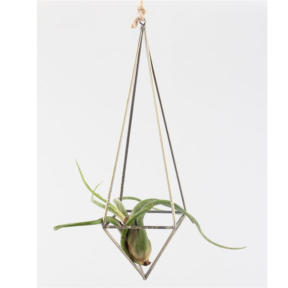 Asılı olan Asma Tillandsia Hava Bitkiləri Rack Metal Həndəsi - Bağ üçün - Fotoqrafiya 4