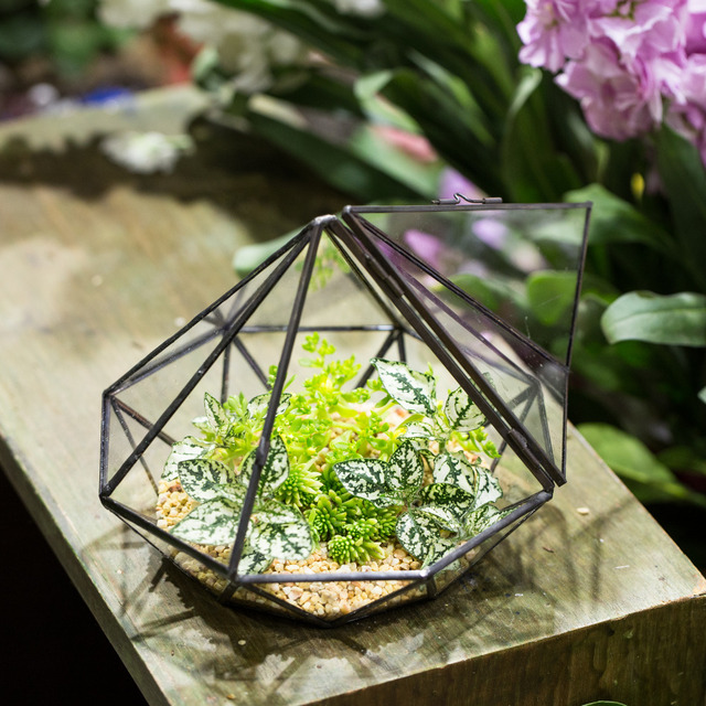 Garden Tabletop Diamond Glass Geometric Terrarium Indoor Balcony