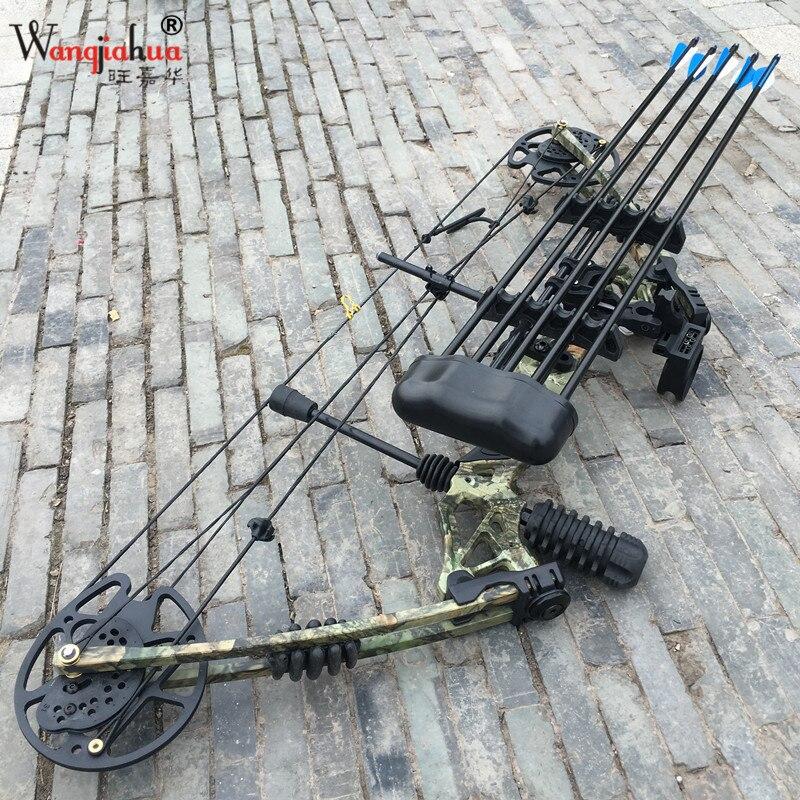 Équipement de tir à l'arc de Chasse En Plein Air Composé Arc Divertissement Sportif De Fitness Concurrence Arc