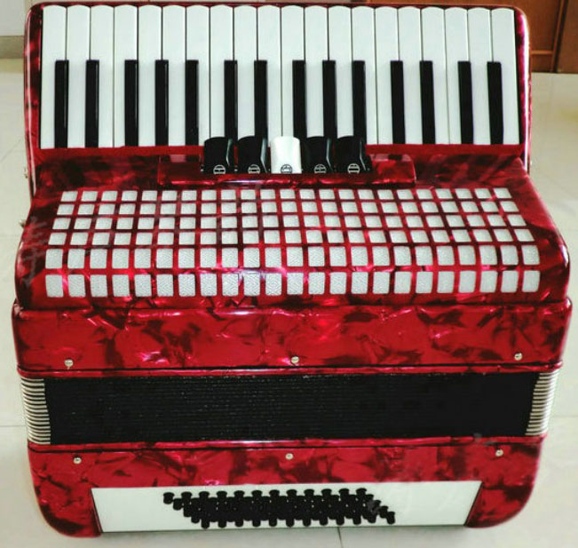 Active Brand New 60 Bass 34 Key 5 Swift Accordion With Bag And Two Shoulder Strap Piano Accordion