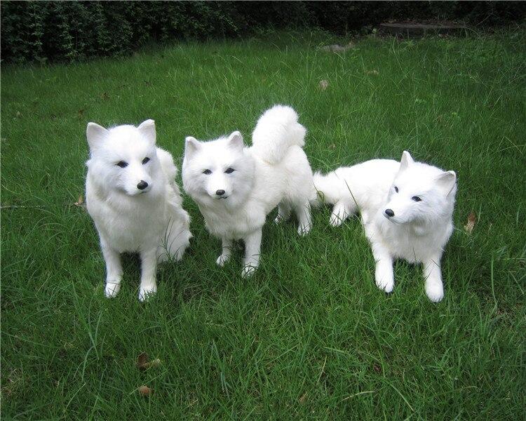 Simulation samoyed chien modèle dur jouet polyéthylène & fourrures grand chien blanc artisanat décoration de la maison cadeau s0666