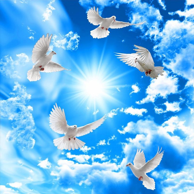 Синее небо белые облака Солнечный свет потолок Настенные обои 3D белый  голубь Зенит Френки для гостиной спальни отеля Papel De Parede Обои     АлиЭкспресс