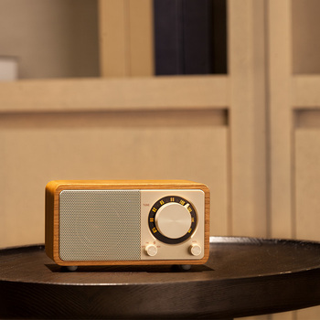 Sangean чистый bluetooth динамик мини радио Bluetooth динамик радио fm портативное радио