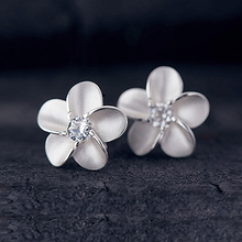 JEXXI Trendy Lady Jewelry 925 Sterling Silver Cubic Zircon Stone Sweet Girl Stylish Stud Earring Luxury Crystal Jewelry