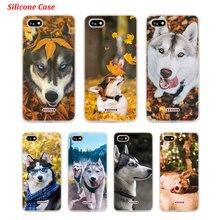 Silicone Phone Case Husky Puppy Dog for Xiaomi Redmi S2 Note 4 4X 5 5Pro 5A Plus 6 6A 7 Pro Cover