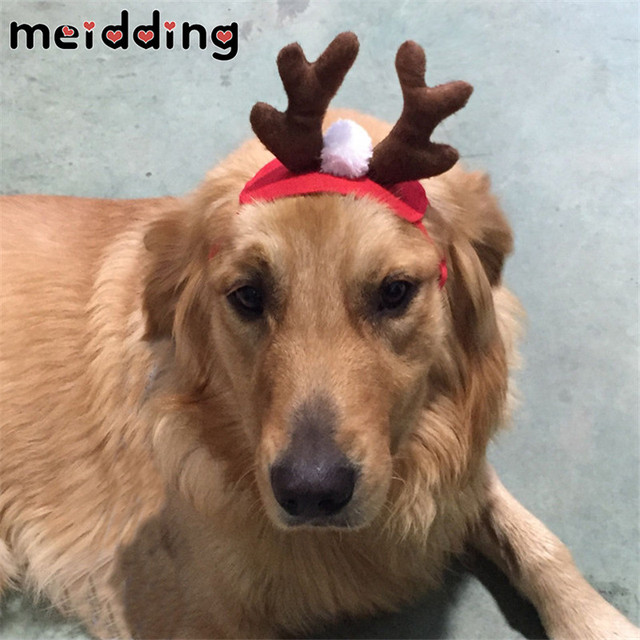 Christmas Hats For Dogs.Us 1 75 24 Off Meidding 1pcs Lovely Elk Antler Horn Hats Christmas Hat For Dog Winter Pet Cat Dog Warm Hat Pet Costume Hat Grooming Accessories In