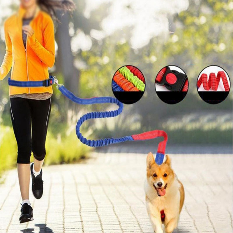 Waist Belt For Pet Dog Collar Leash Running Puppy Lead Sport Leashes Rope With Wasitbelt Adjustable Nylon Dog Collar Leash Set