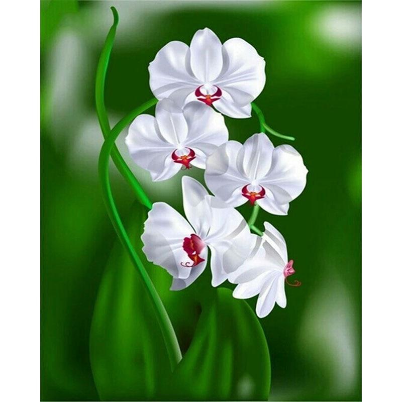 Diamond orchid white flowers vase diamond embroidery full flower diamond orchid white flowers vase diamond embroidery full flower painting designs paintings on the wall picture of rhinestones in diamond painting cross mightylinksfo
