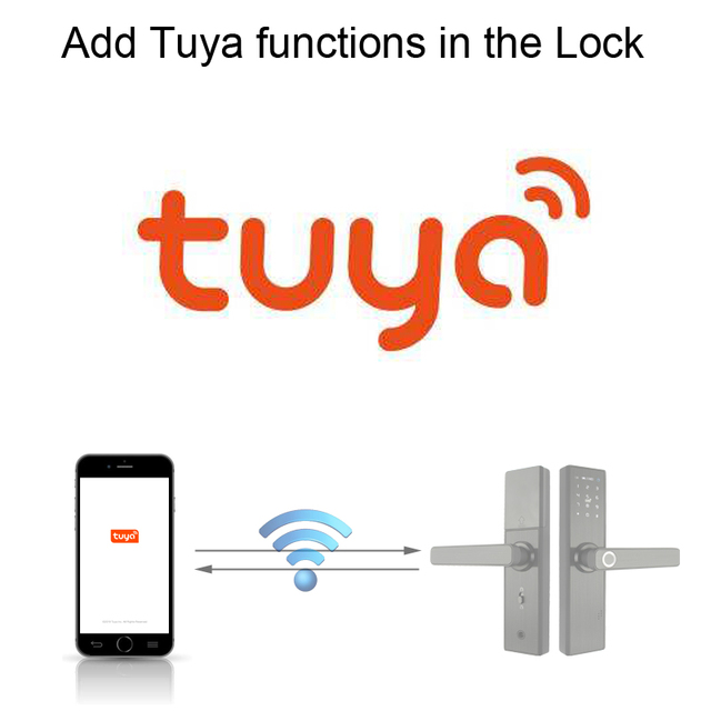 Tuya Function Upgrade Extra Payment For Our Lock R FG5
