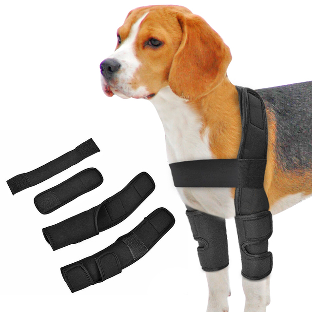 Dog Knee Brace Injuries Leg Brace Surgical Joint Wrap Dog Wounds Heals Canine Front Leg Arthritis Prevents Dogs Medical Supplies