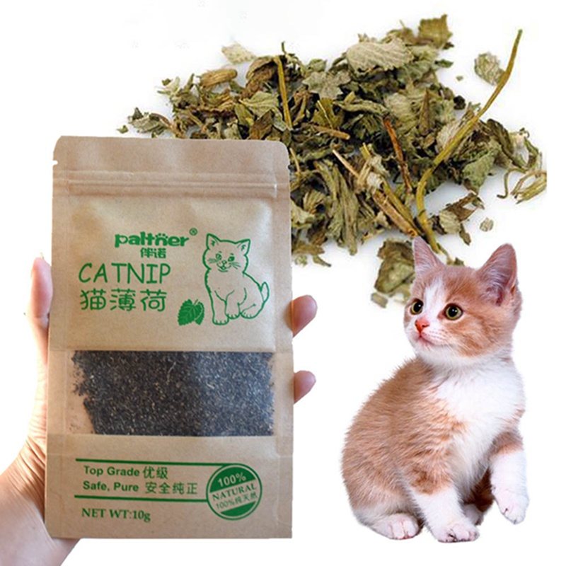 New Organic 100% Natural Premium Catnip Cattle Grass 10g Menthol Flavor Funny Cat Toys Interactive Cat Toys