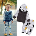 Toddler Infant Kids Baby Boys Cotton Long Sleeve Hooded Tops+Long Pants Leggings Monster Outfits Set Clothes