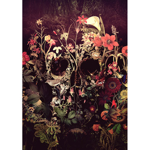 Картина по номерам DIY Прямая поставка 40x50 50x65 см череп розы цветок холст свадебное украшение искусство картина подарок