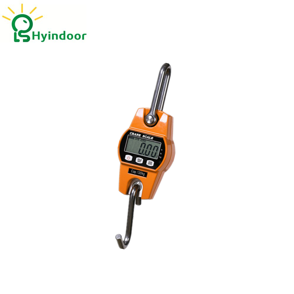 200kg High Accuracy Electronic Price Computing Weighing Scales Digital Hanging Hook Crane Scale 30kg high accuracy electronic price computing weighing scales digital hanging hook crane scale