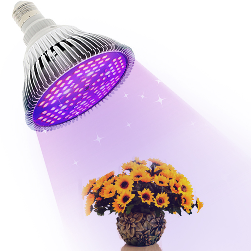 E27 Lamp For Plants LED Grow Light Full Spectrum Grow Light Bulb Phyto Lamp Photosynthesis For Indoor Flowers And Seedlings Grow