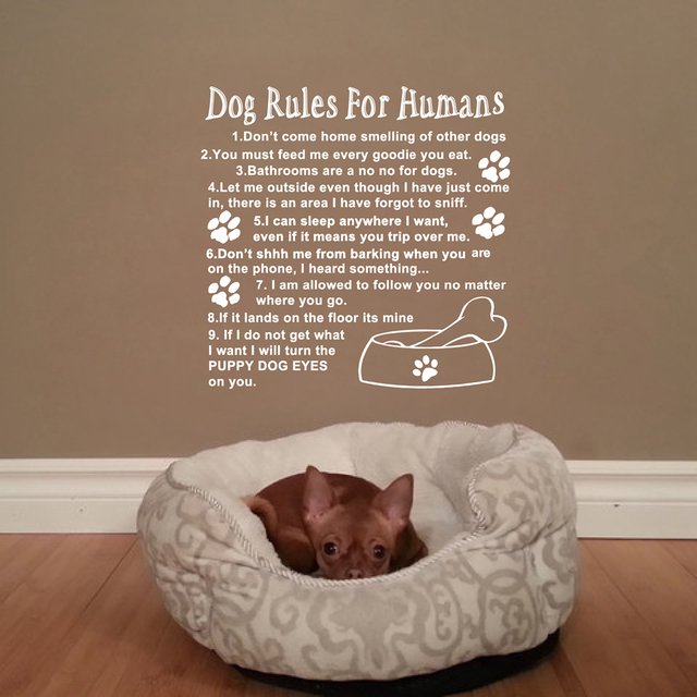 Us 9 39 6 Off Dog Rules For Humans Wall Art Quotes Decal Cute Love Dog Room Wall Sticker Decoration In Wall Stickers From Home Garden On