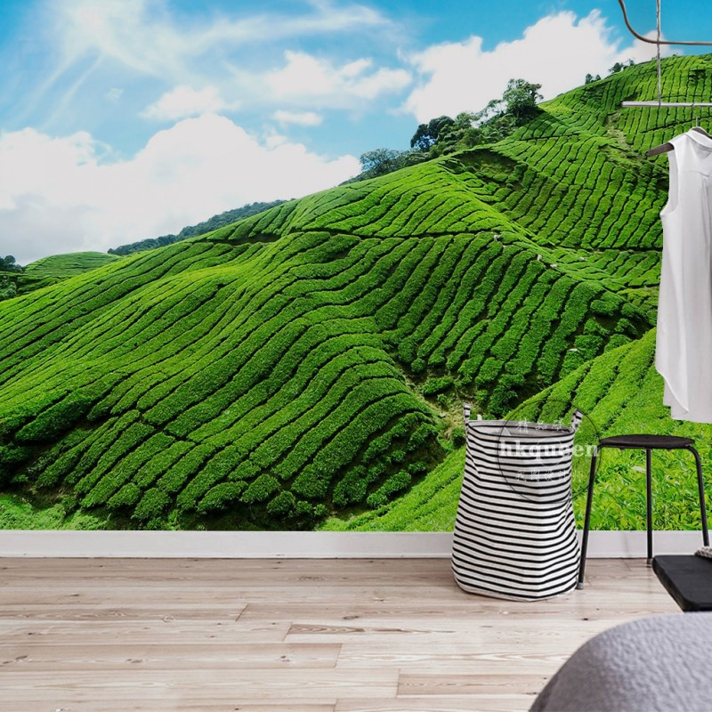 Free Shipping Modern terraced tea garden green fashion elegant background lobby mural 3D stereo office decoration wallpaper 100g jasmine flower green tea green tea with jasmine buds secret gift free shipping