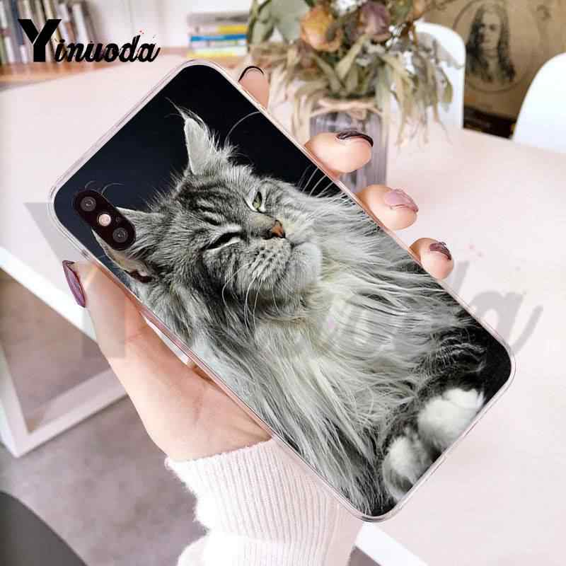 Yinuoda For iPhone 7 6 X Case Pet Maine Coon Cat New Personalized Print  Phone Case for iPhone 8 7 6 6S Plus X 5 5S XS XR XS XR