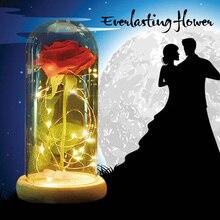 WR Красота и Чудовище «полный комплект, красные шелковые розы и свет с Fallen лепестки в Стекло куполом на деревянной База