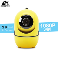 Mini Wireless Camera 2mp SD Card Wifi IP Camera PTZ 1080P Full HD P2P Motion Detection