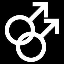 Black Silver Gay Pride Symbolic Car Decoration Logo