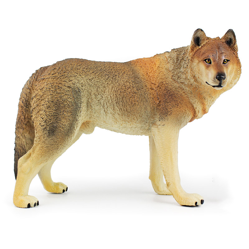 Toys Wolf-Models Children Collection Model-Wildlife-Figures Science-Gifts Brown Prairie
