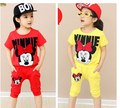 New Hot Girls Clothing Set Cotton T Shirt+ Pants Children Summer T Shirt + Pants Clothing set Fit 2-7Yrs Baby Clothing Set